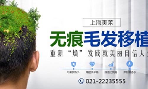 上海美莱植发